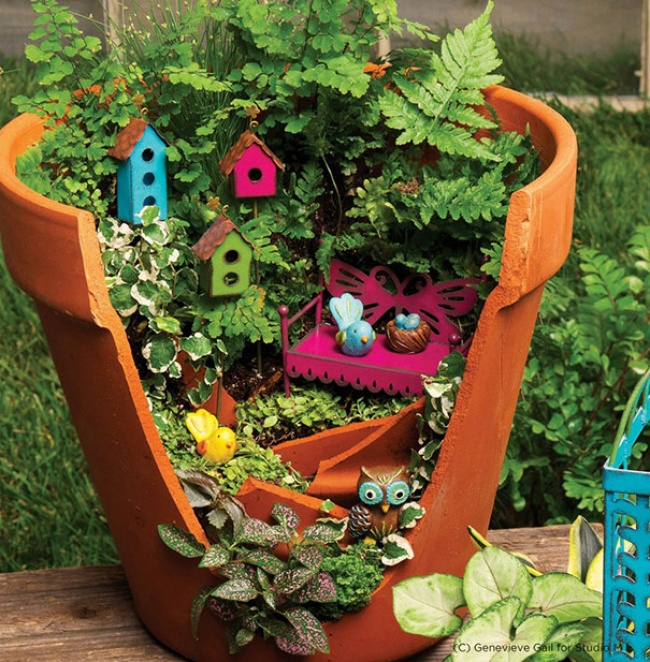 even damaged flower pot can be useful to look beautiful
