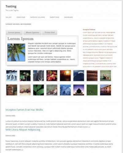 Cтраницы рубрик в WordPress